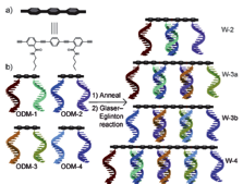 DNA-directed assembly and coupling of 2 nm long molecular rods.